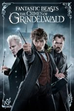 Fantastic Beasts: The Crimes of Grindelwald ( 2018 )