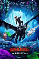 How to Train Your Dragon: The Hidden World ( 2019 )