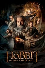 The Hobbit: The Desolation of Smaug ( 2013 )